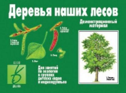 Купить Демонстрационный материал. Деревья наших лесов в Москве по недорогой цене