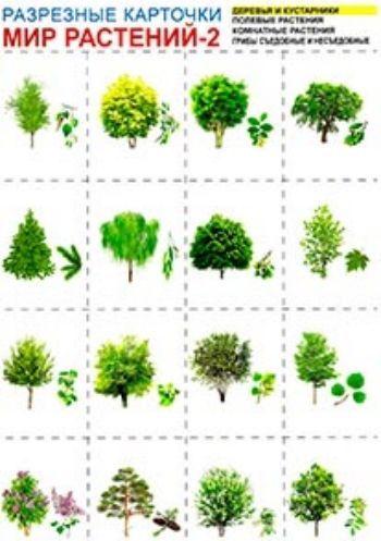 Купить Мир растений-2. Разрезные карточки в Москве по недорогой цене