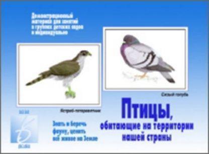 Купить Демонстрационный материал. Птицы обитающие на территории нашей страны в Москве по недорогой цене