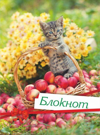 Купить Блокнот (с изображением кошки) в Москве по недорогой цене