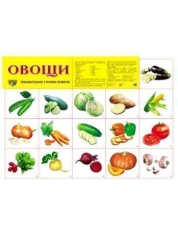 """Купить Плакат """"Овощи"""" в Москве по недорогой цене"""