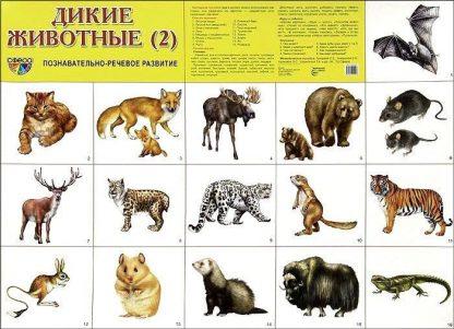 """Купить Плакат """"Дикие животные 2"""" в Москве по недорогой цене"""