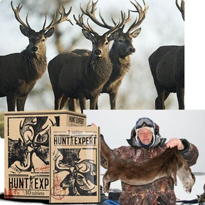 Hunt Expert